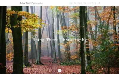 Beingthere Photography Website
