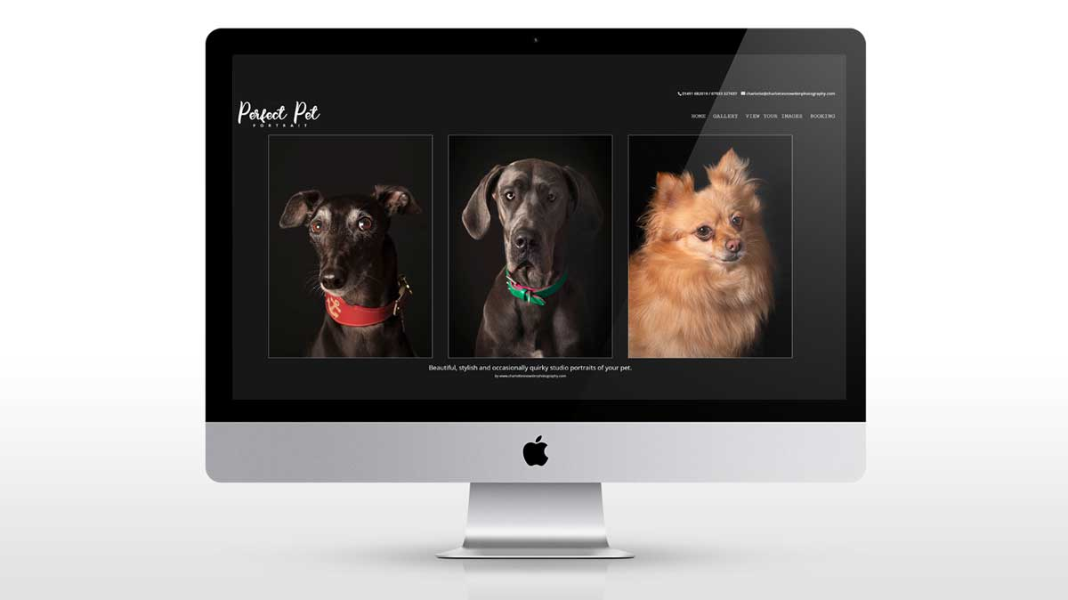 new website for charlotte snowden photography
